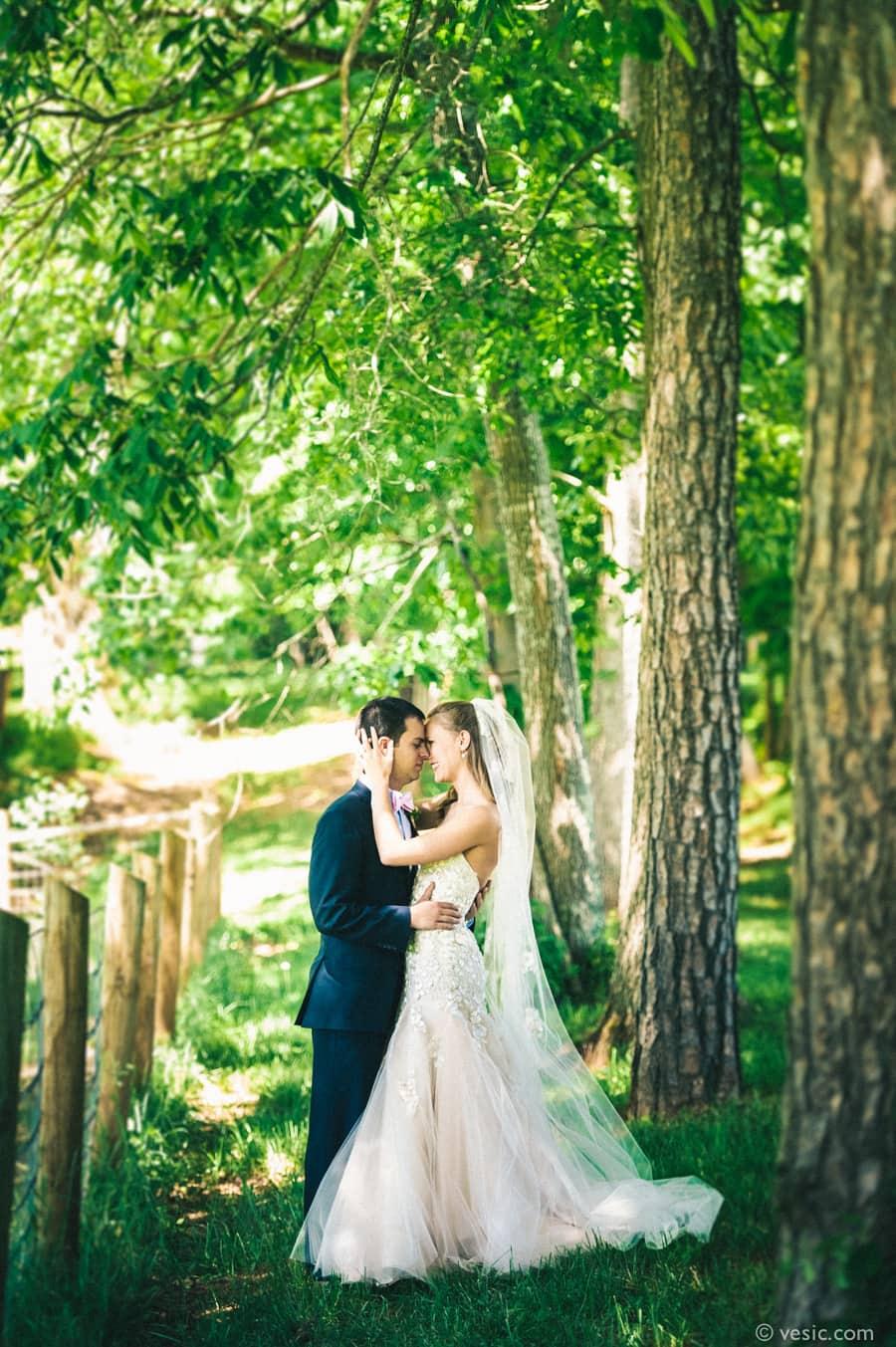 Asheville Destination Wedding Photography-11
