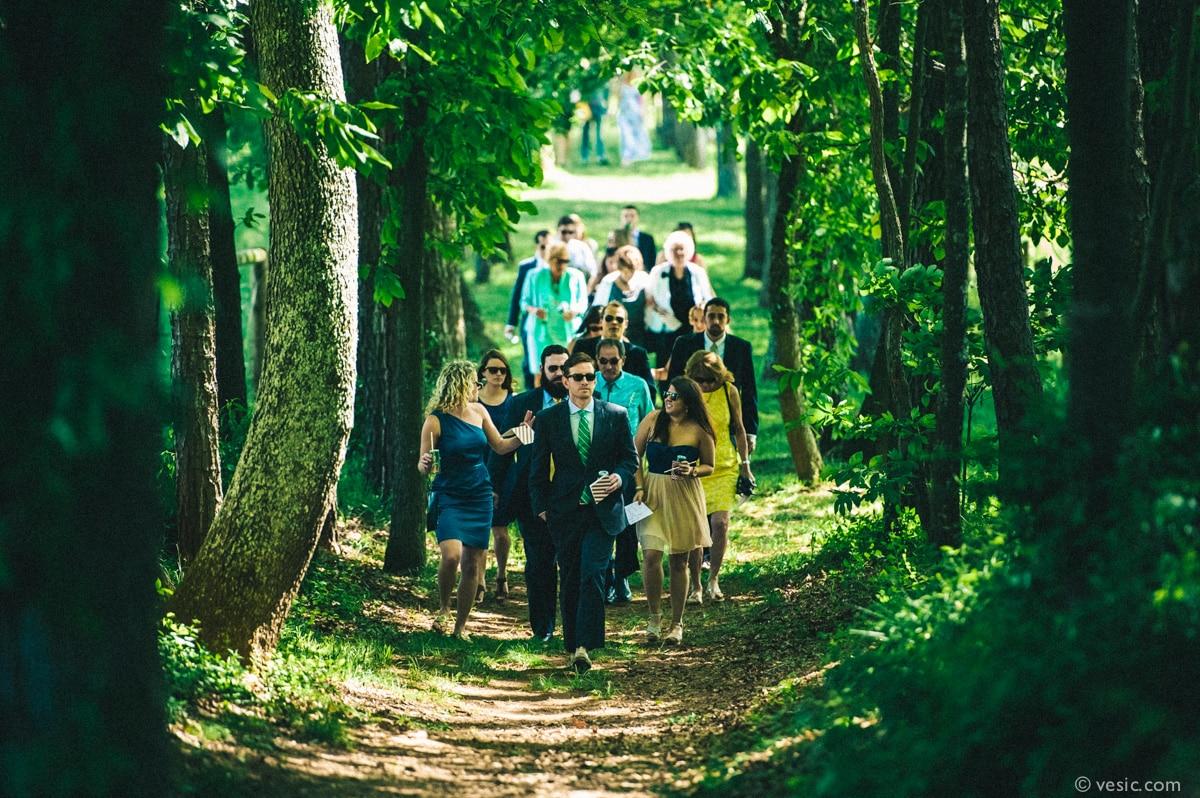 Asheville Destination Wedding Photography-15