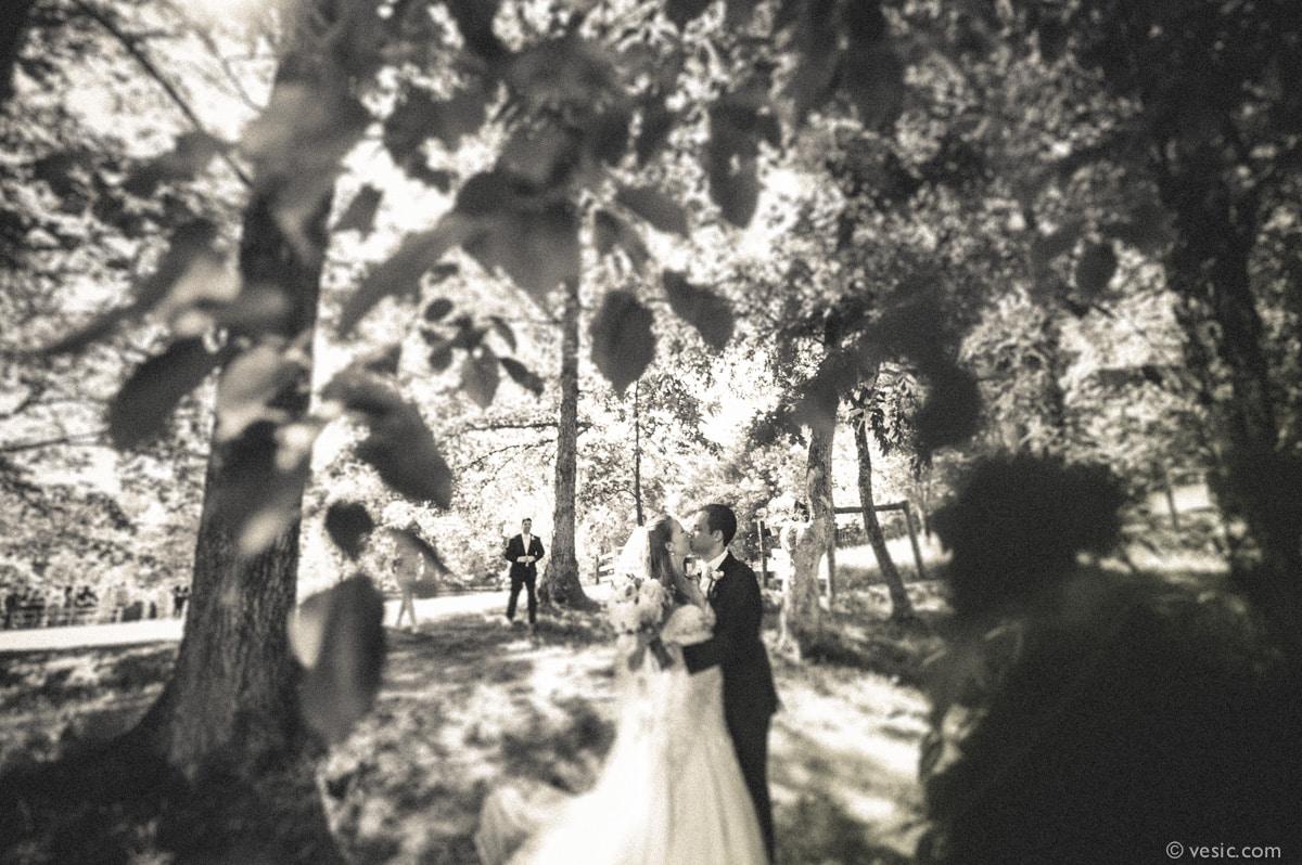Asheville Destination Wedding Photography-21