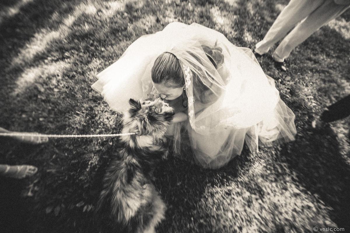 Asheville Destination Wedding Photography-23