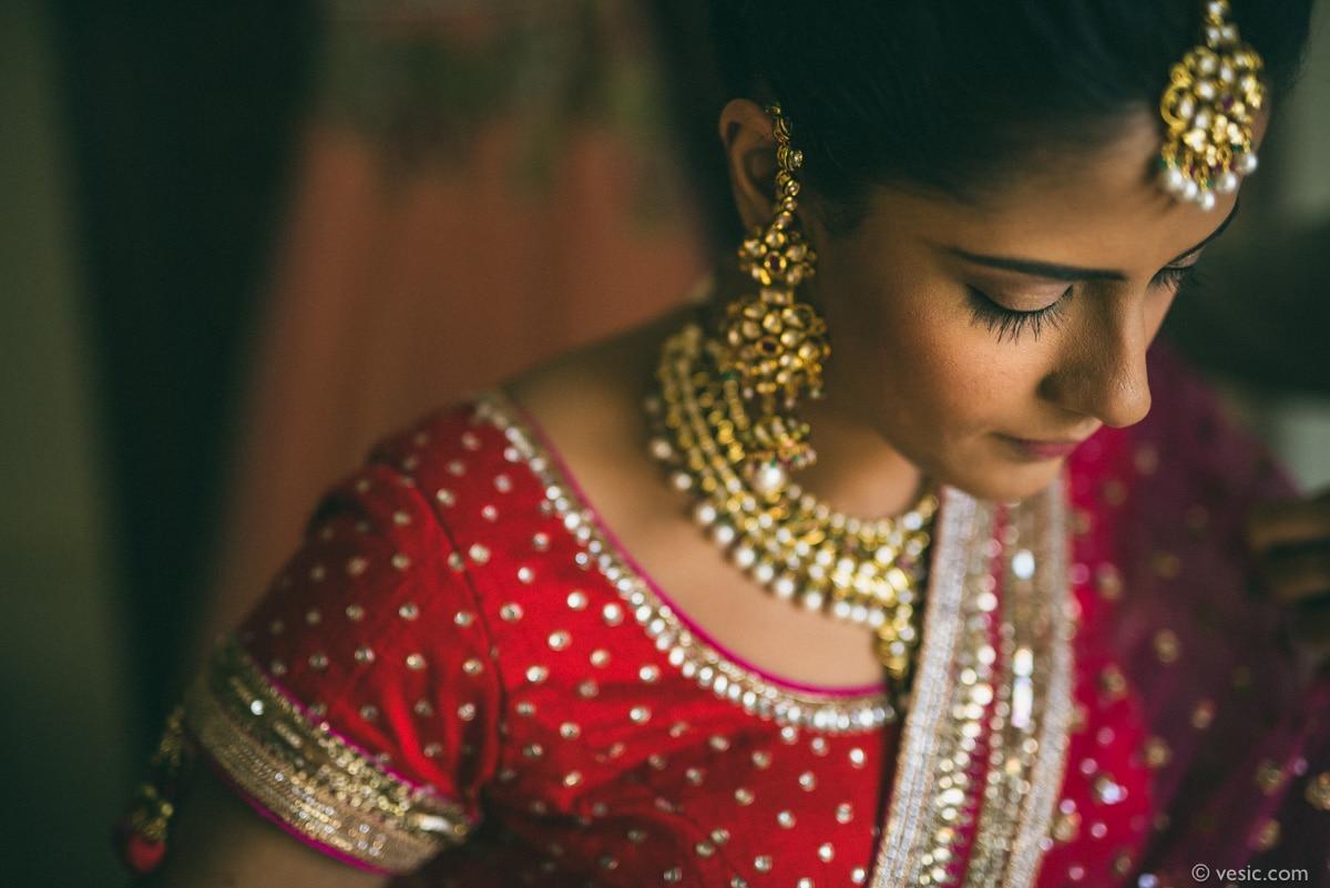 Indian Wedding North Carolina-02