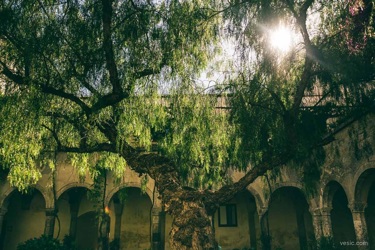Destination_Wedding_Sorrento_Italy-033