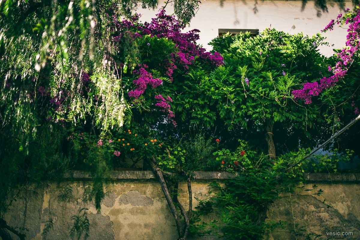 Destination_Wedding_Sorrento_Italy-036