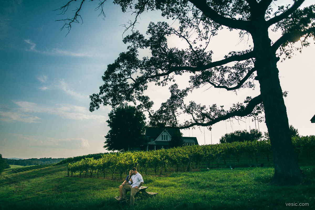 virginia_mountains_engagement_photography-07