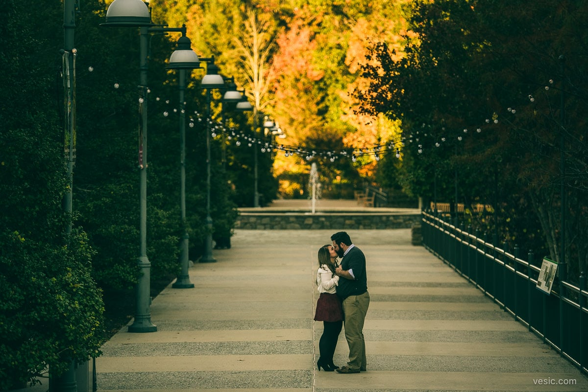 asheville_engagement_photograph-11