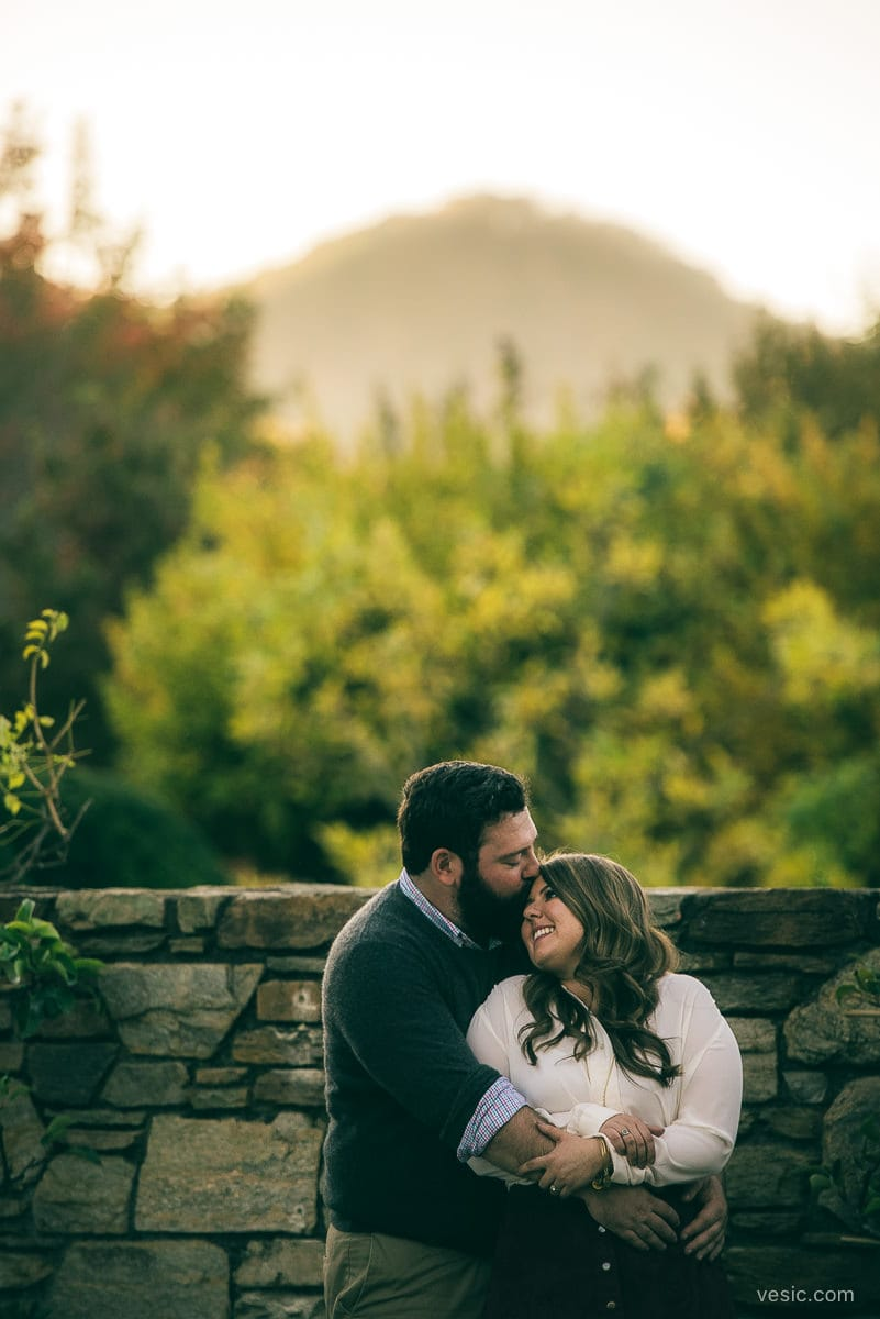 asheville_engagement_photograph-13