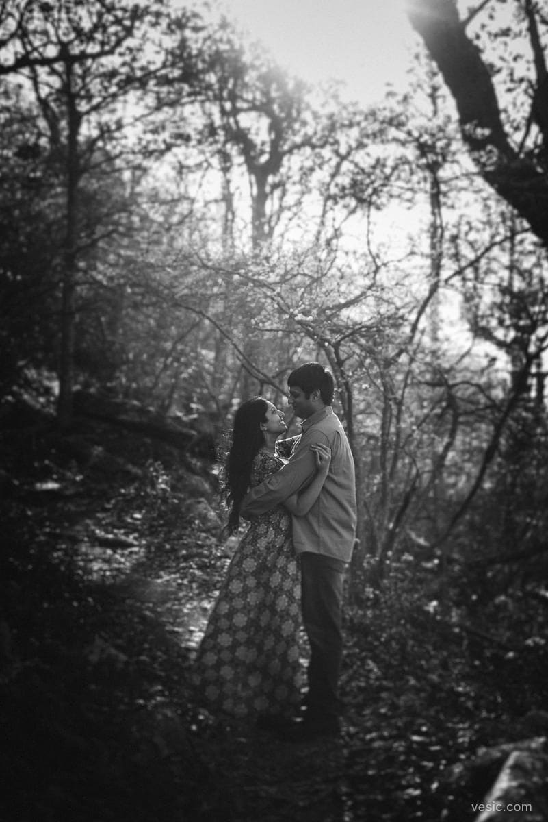 virginia_engagement_photo-12