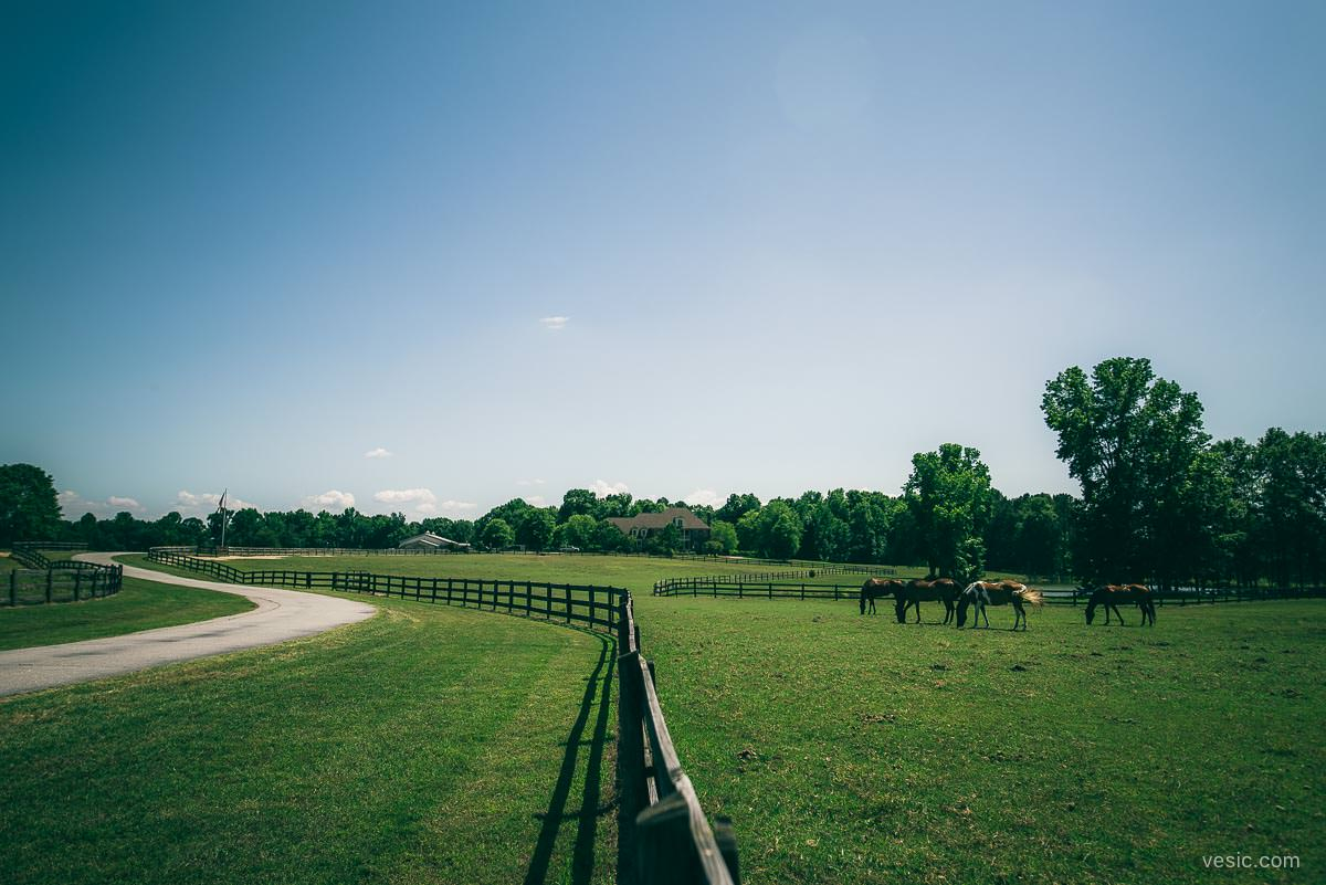 Raleigh farm wedding
