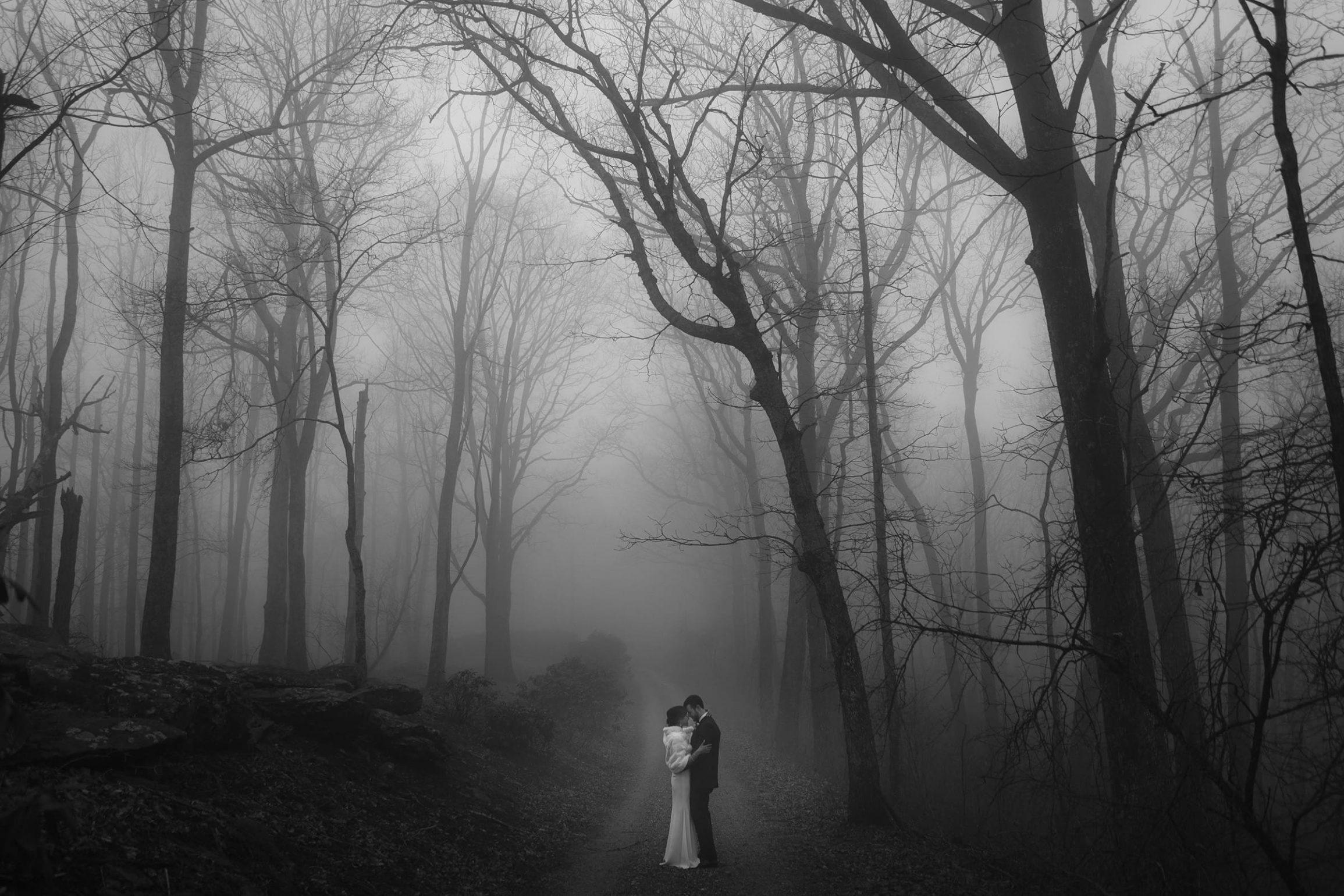 Asheville Wedding Romance