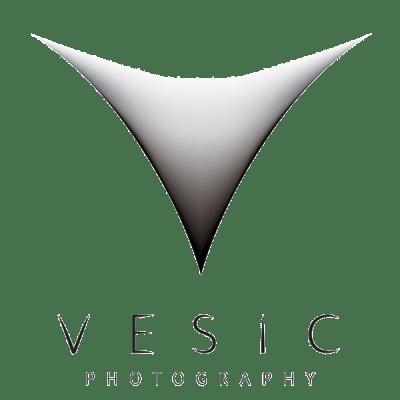 Raleigh & Charlotte NC Wedding Photographer | Vesic Photography